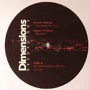 DIREC001 - DIMENSIONS Recordings - VARIOUS