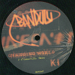 INF024T - INFONET ELECTRONIC Recordings